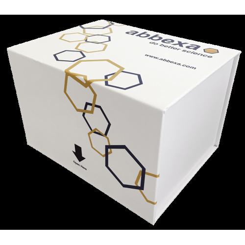 abbexa Bird Myostatin (MSTN) ELISA Kit SKU: abx257861 package