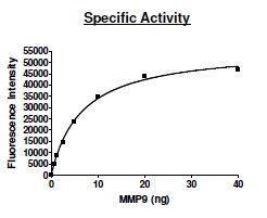 US Biological MMP9 (Q279R), Recombinant, Human (Matrix metallopeptidase-9, gelatinase B, MANDP2, CLG4B, Macrophage gelatinase, GELB, EC 3.4.24) SKU: 171925 package
