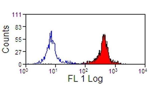US Biological Mouse Anti-Horse CD11a  (CD18)(PE) mAb SKU:227399 package