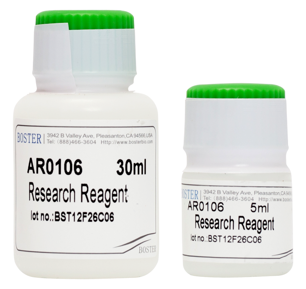 Cytoplasmic and Nuclear Protein Extraction Kit SKU: AR0106