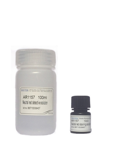 Neutral Red Cell Proliferation and Cytotoxicity Assay Kit SKU: AR1157